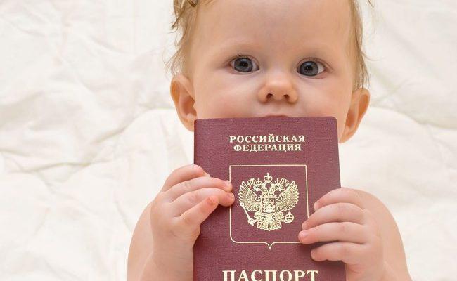 Как сделать регистрацию новорожденного 560